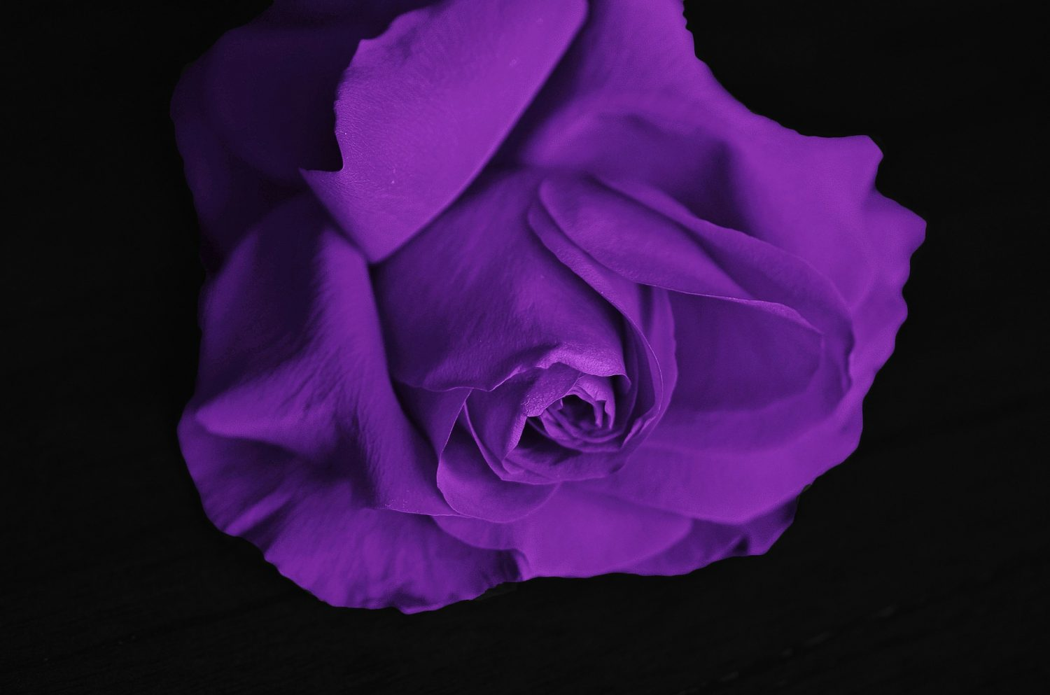 Wedding Colour Schemes: shades of purple   I Want a Photo Booth Oxfordshire